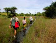 Camino-a-la-laguna-de-Anor_P-N-Orango_Poilao_Bijagos_Guinea-Bissau0009-500x333