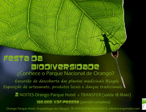 ¡¡FESTA DA BIOVERSIDADE!!